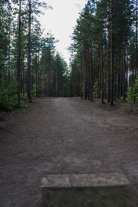 THG-Hyvinkää (3 of 25)