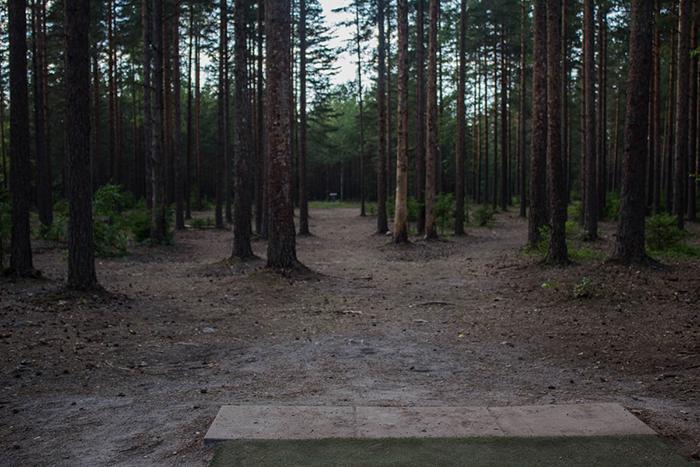 THG-Hyvinkää (9 of 25)